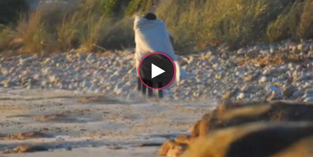 Liz Solari aparece por la web con un video hot en una playa de Punta del Este